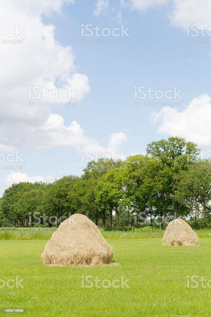 Hay Cock (Hooi opper) stock photo
