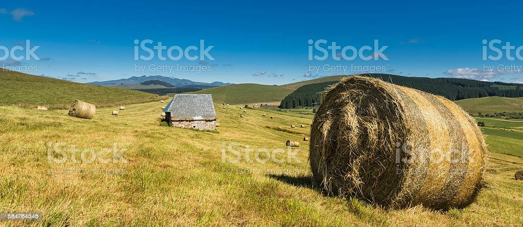 Hay field in the countryside of France stock photo