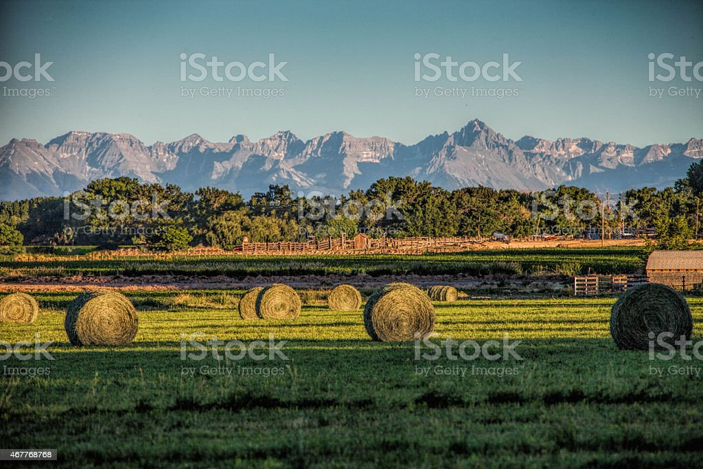 Hay Fields in the San Juans stock photo