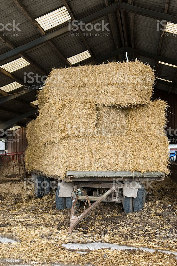Hay in barn. royalty-free stock photo