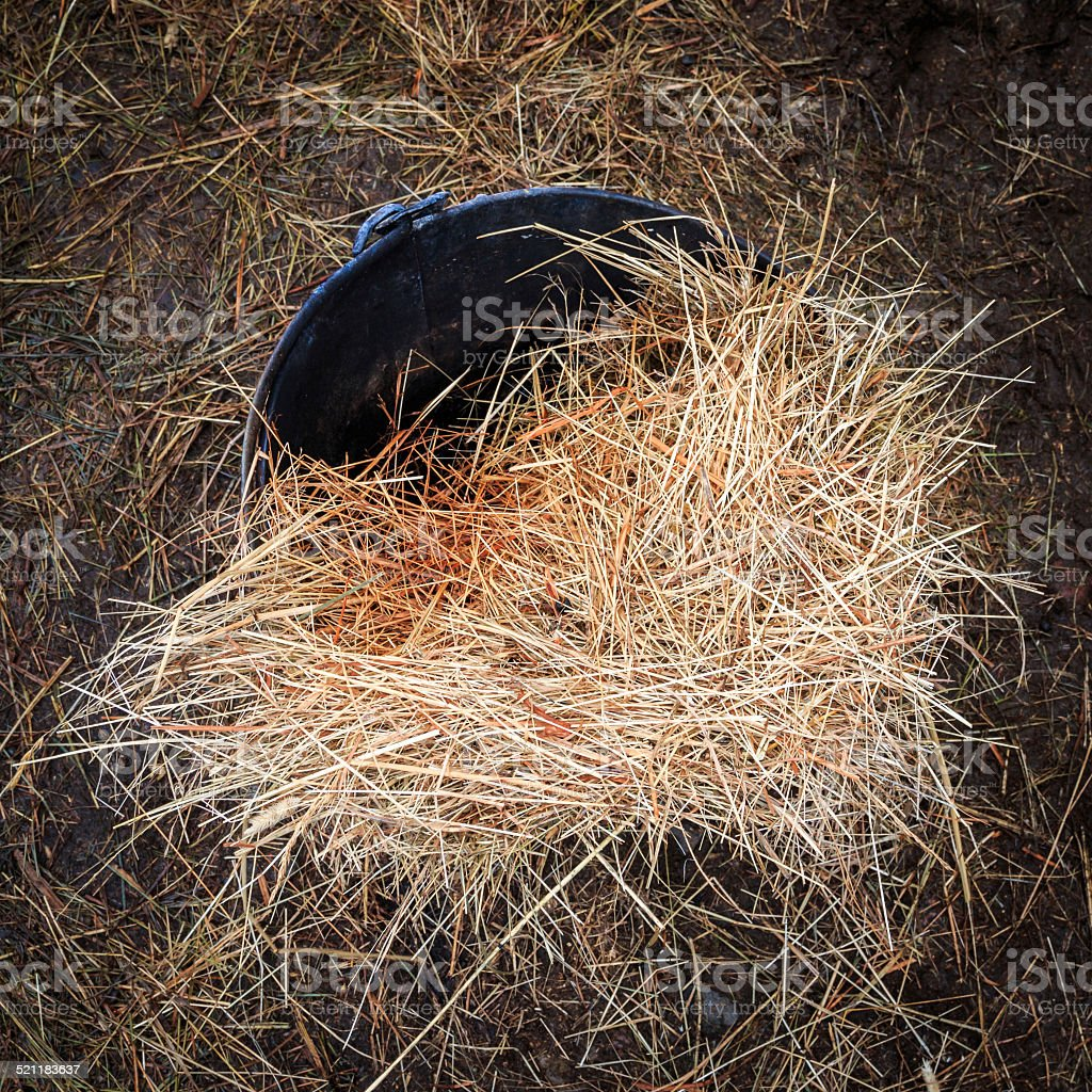 Hay in bucket on the ground outside a farm barn stock photo