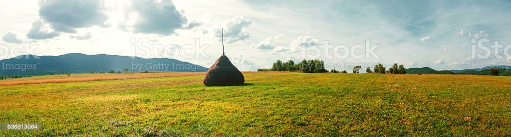 Hay in stacks. Horizontal position. stock photo