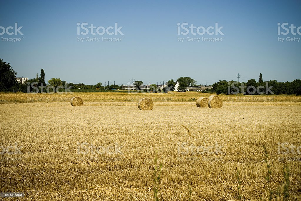 Hay in Town stock photo