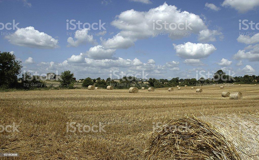 hay, landscape royalty-free stock photo