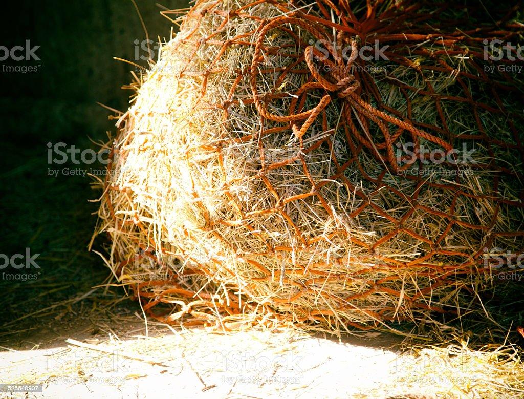 hay net stock photo