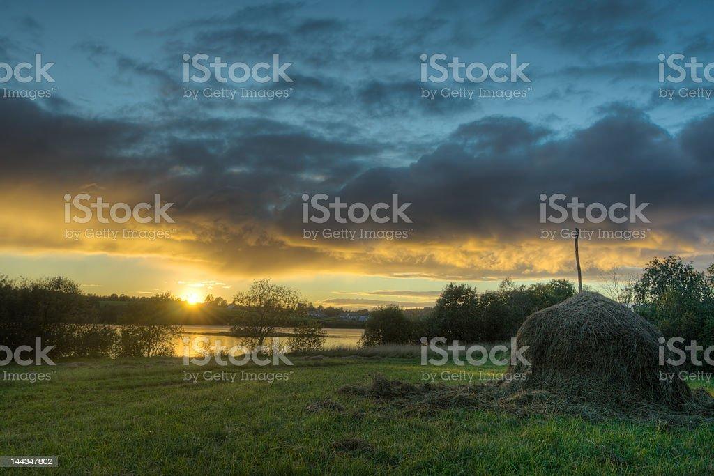 Hay on coast royalty-free stock photo