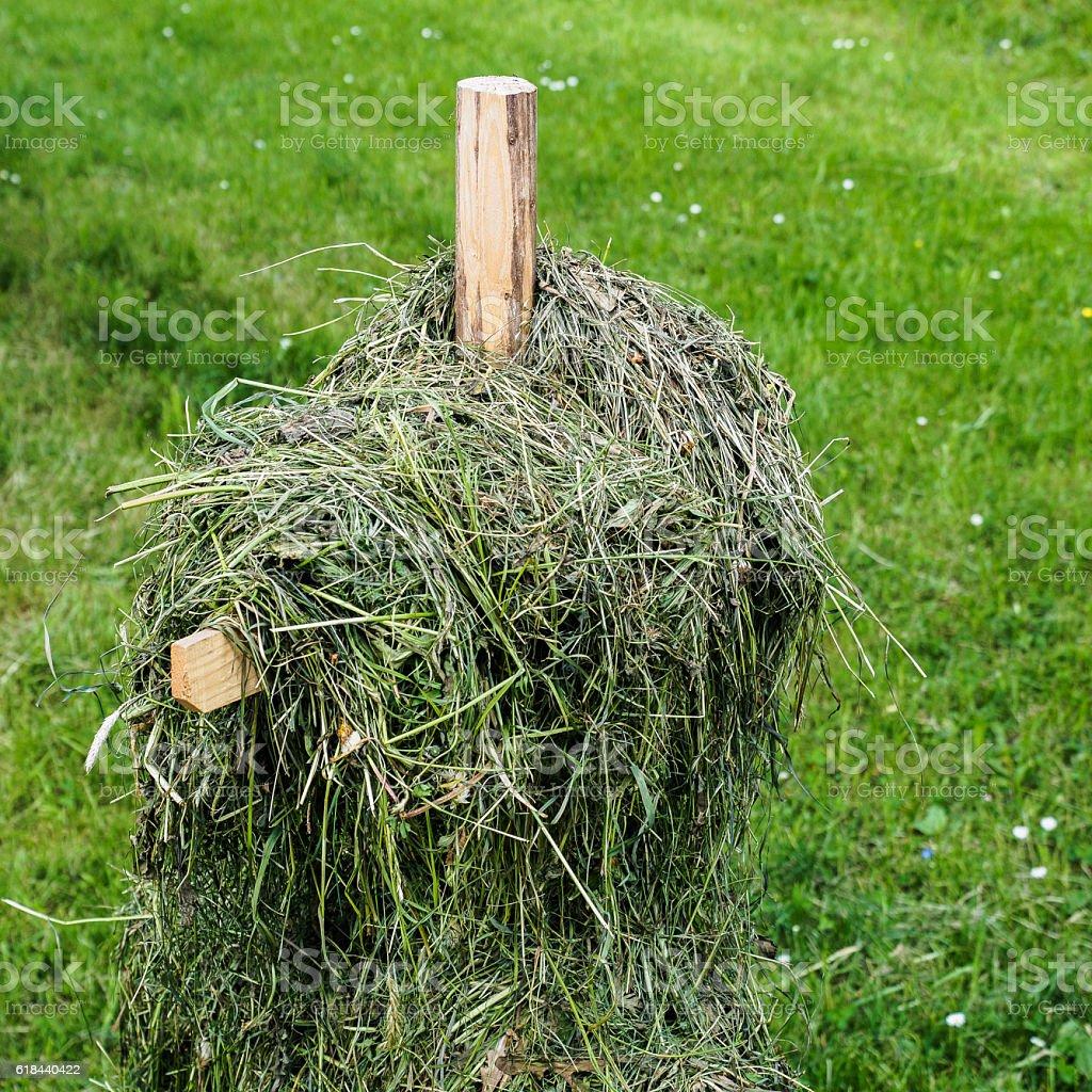 Hay on poles stock photo