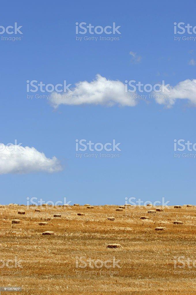 Hay on the Horizon stock photo