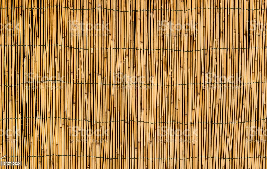 Hay or dry grass background / Thatch roof for background. stock photo