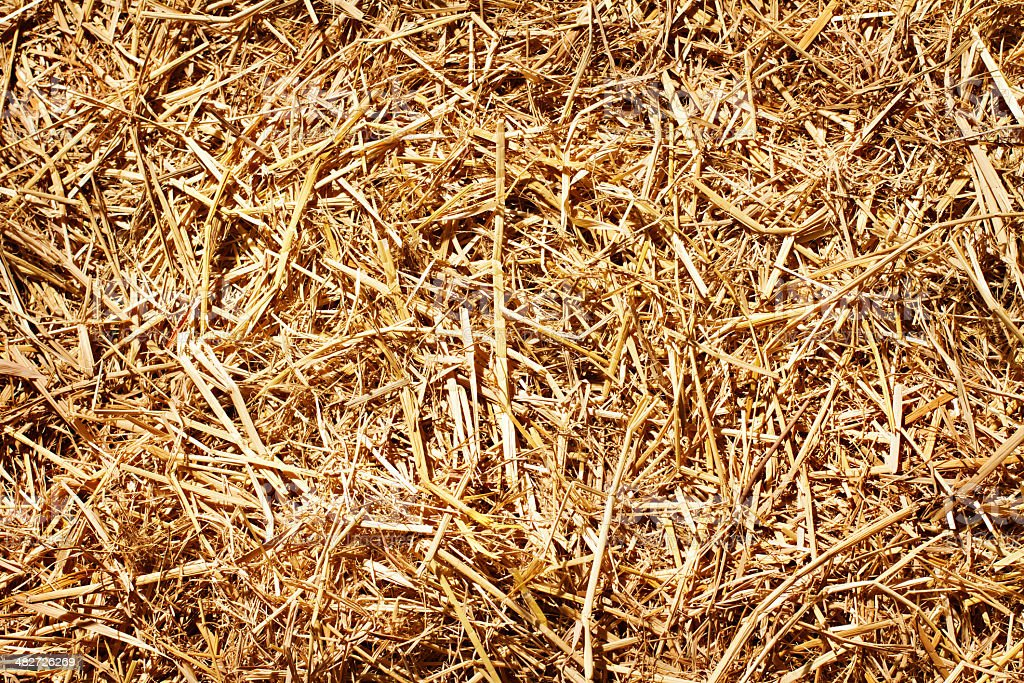 hay or straw textured background vintage style stock photo