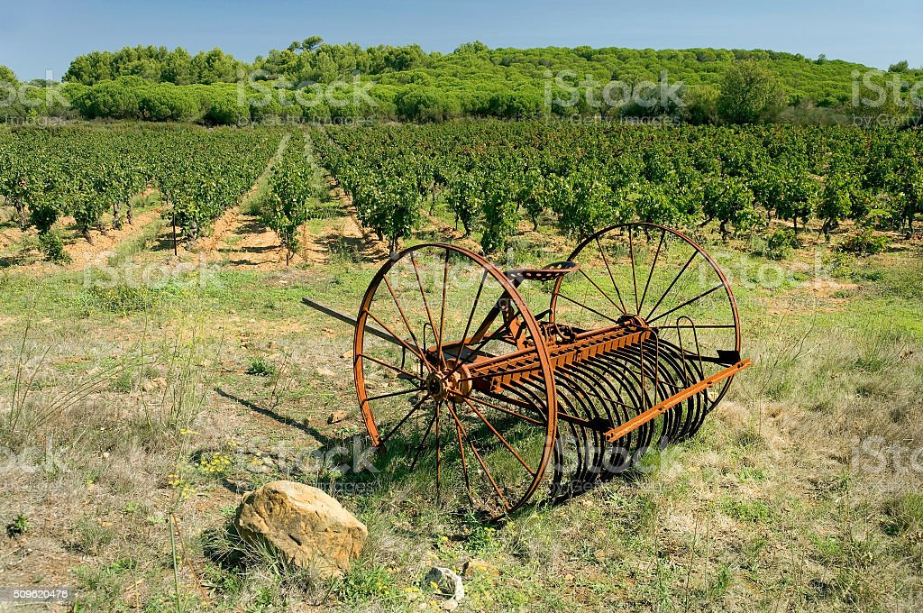 Hay raker and vineyard in France stock photo