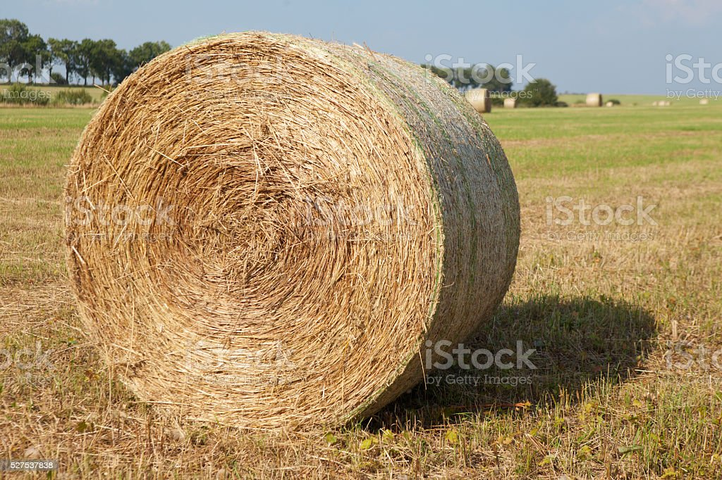 Hay Roll On Farm stock photo