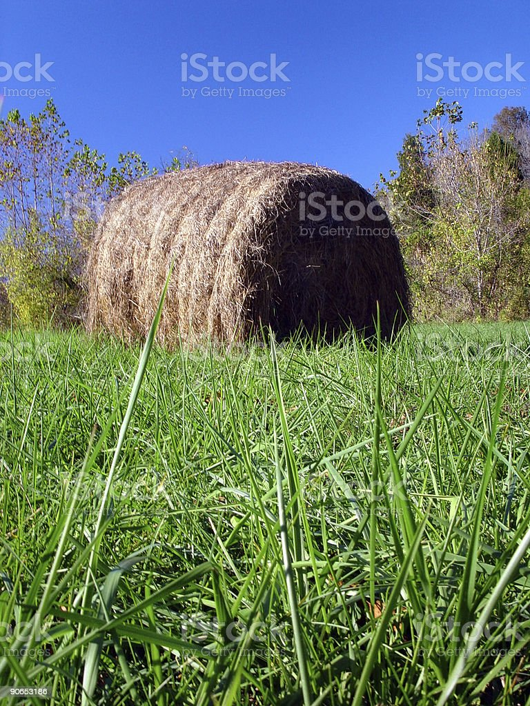 Hay Roll on Farm royalty-free stock photo