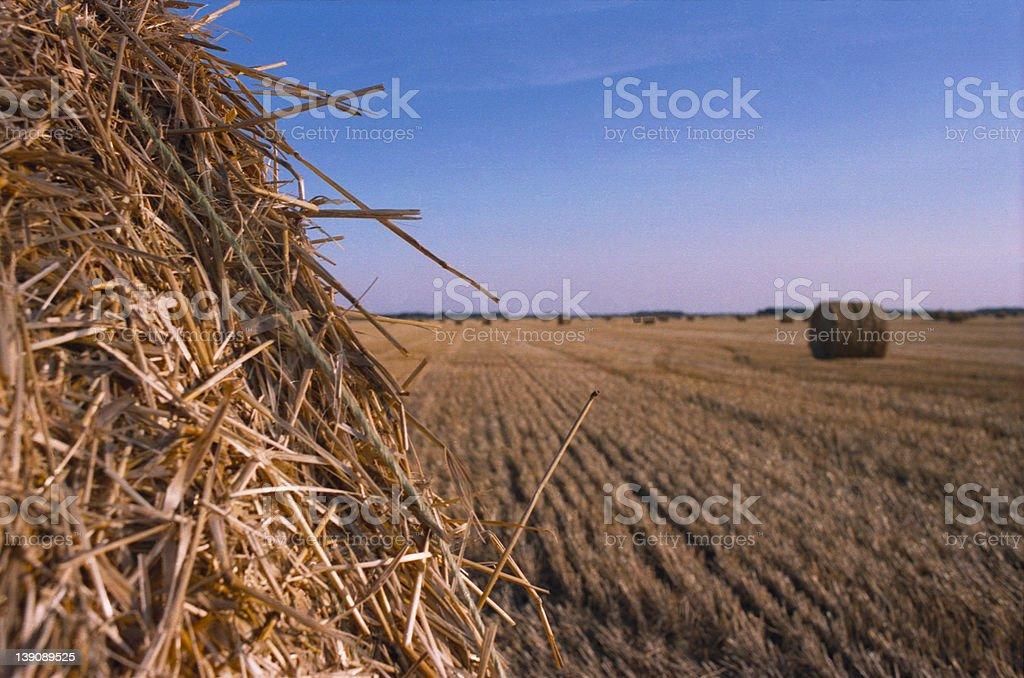 Hay Round Bails stock photo