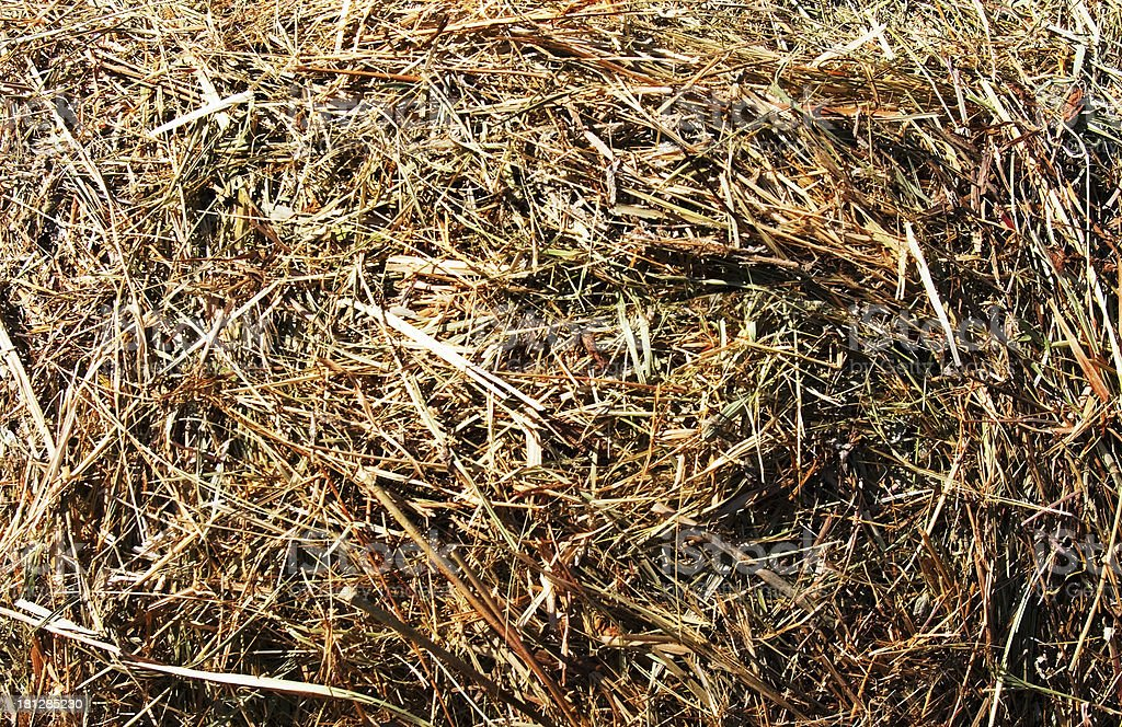 Hay seamless background royalty-free stock photo