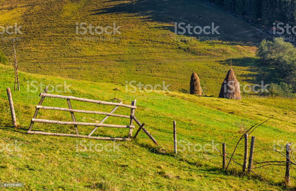 hay stacks behind the fence on rural field stock photo