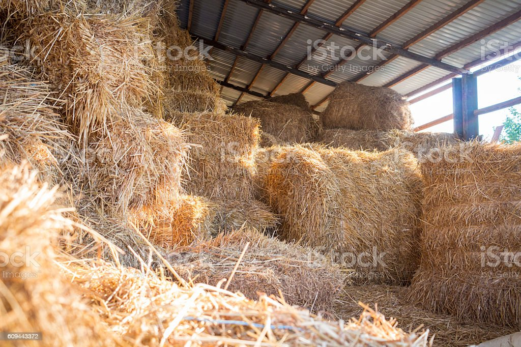 Hay stacks storage at farm haylof stock photo
