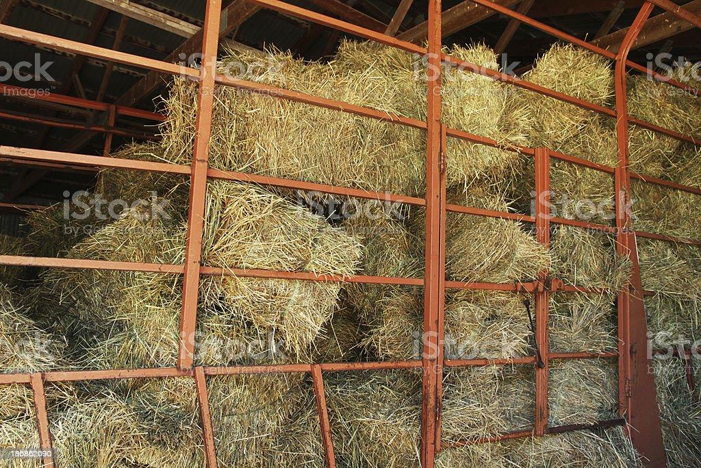 Hay Trailer stock photo