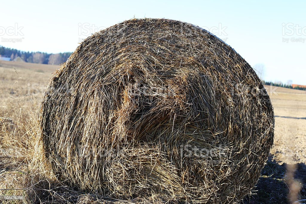 Haybale royalty-free stock photo