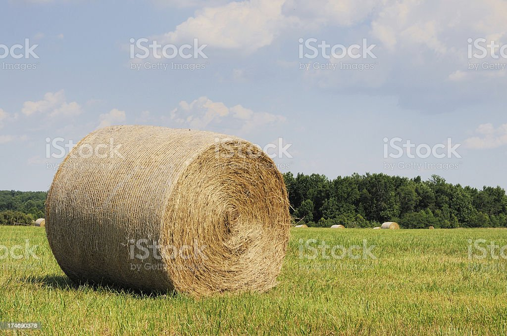 Haybales in an Indiana Farm Pasture royalty-free stock photo