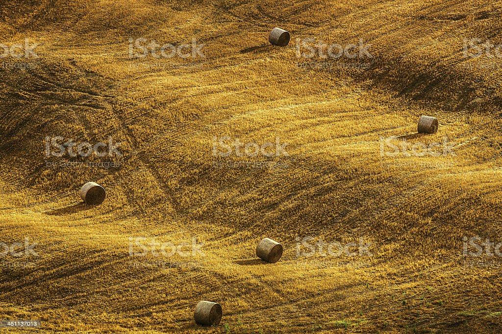 haybales in Tuscany royalty-free stock photo