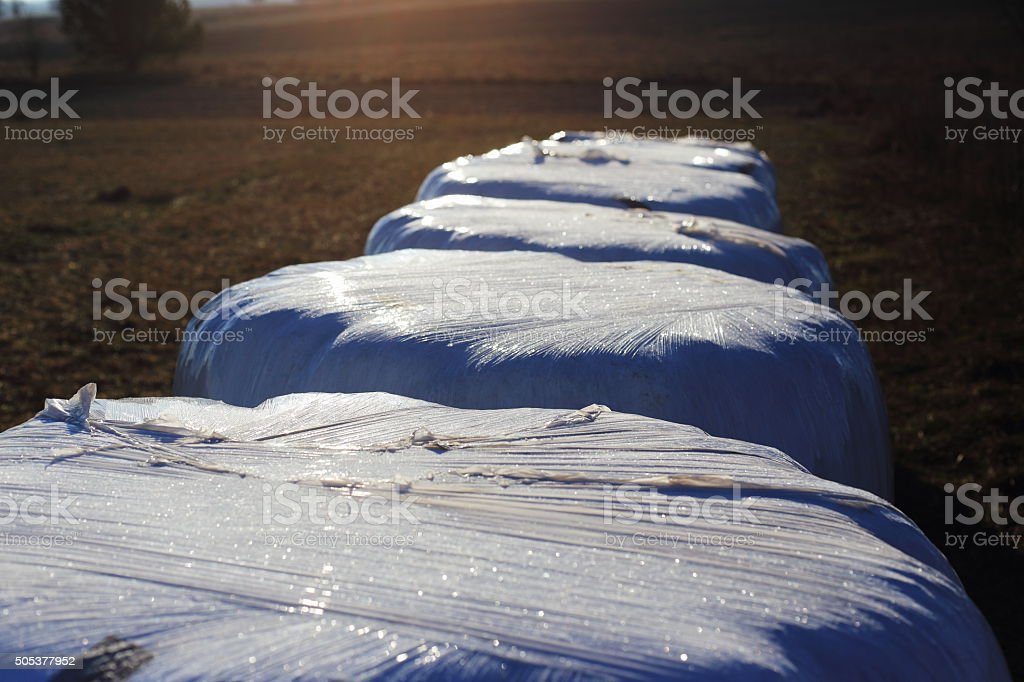 haybales in winter royalty-free stock photo
