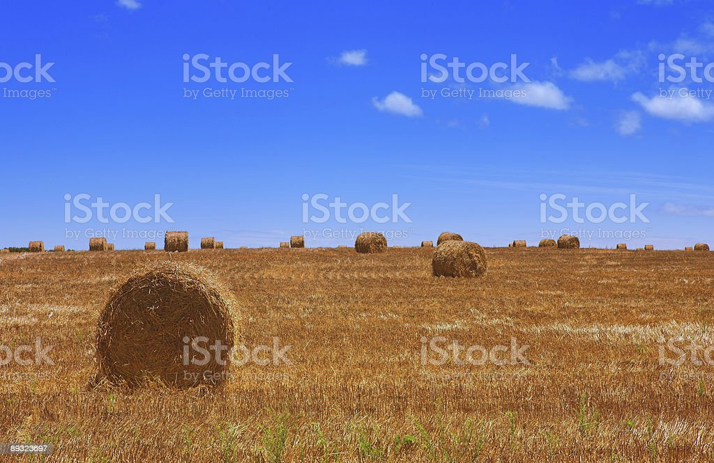 Haybales on a farm with blue sky royalty-free stock photo