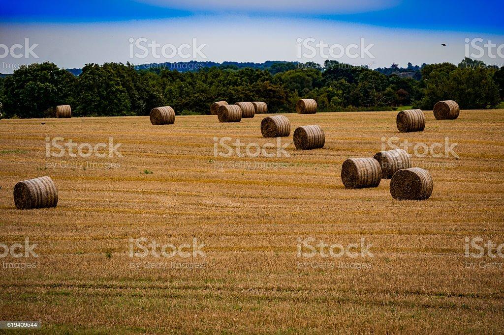 haybales stock photo
