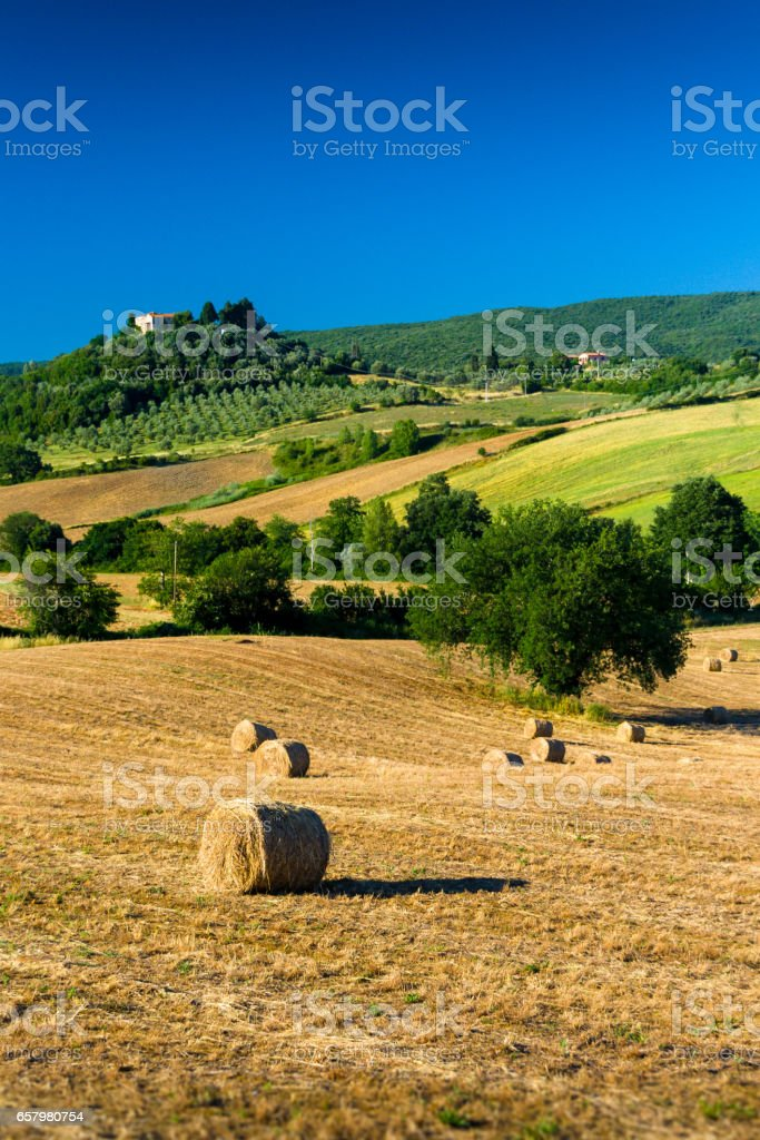 haycock and trees in sunny tuscan countryside, Italy stock photo