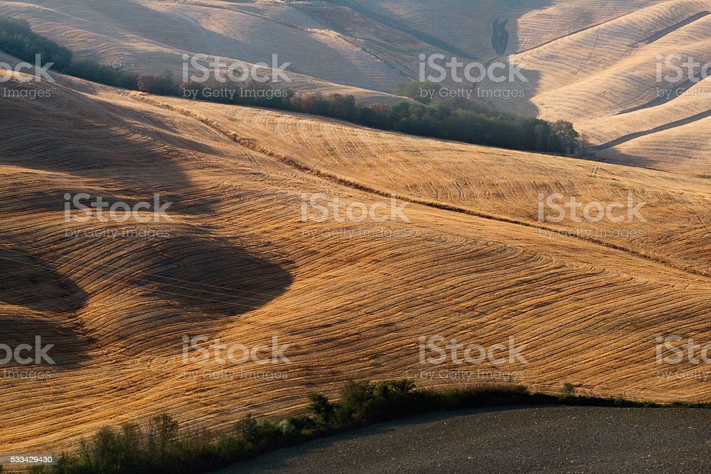 Hayfield in Val d'Orcia,Tuscany stock photo