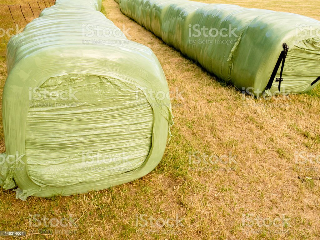 Haylage bales left outdoors for fermentation stock photo