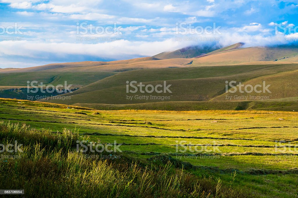 Haymaking in Armenian Mountains stock photo