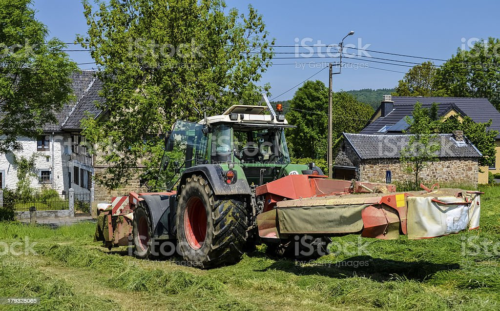 Haymaking royalty-free stock photo