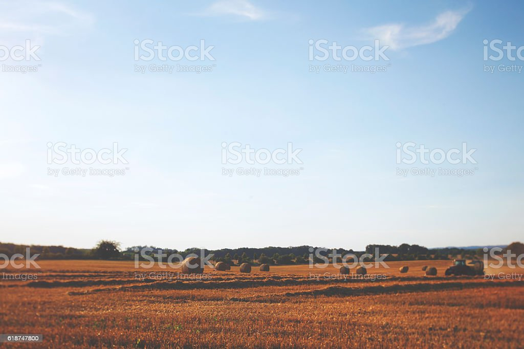 Haymaking withfarm tractor in summer stock photo