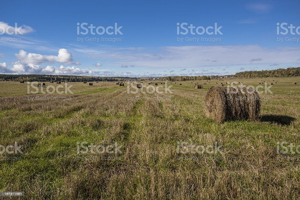 haystack on field royalty-free stock photo