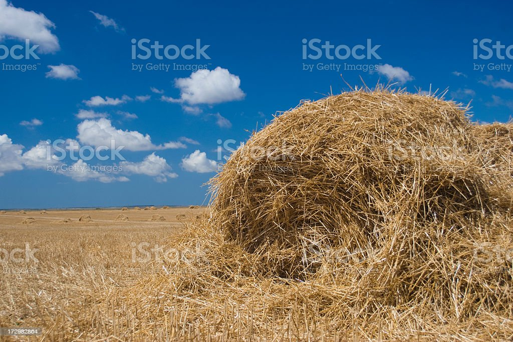 haystack royalty-free stock photo