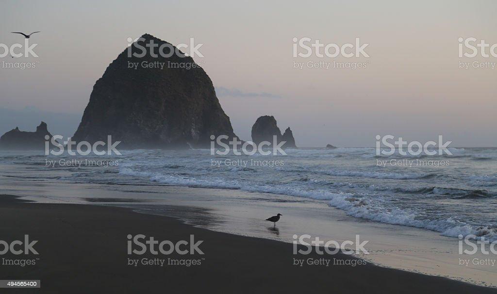 Haystack Rock at Cannon Beach, Oregon stock photo