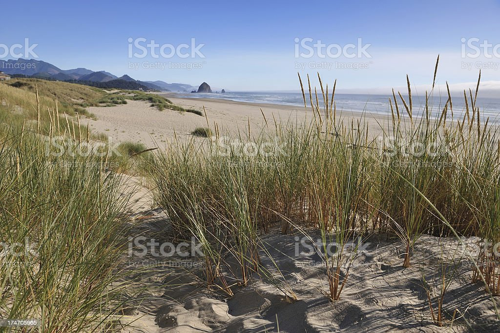 Haystack Rock, Cannon Beach royalty-free stock photo