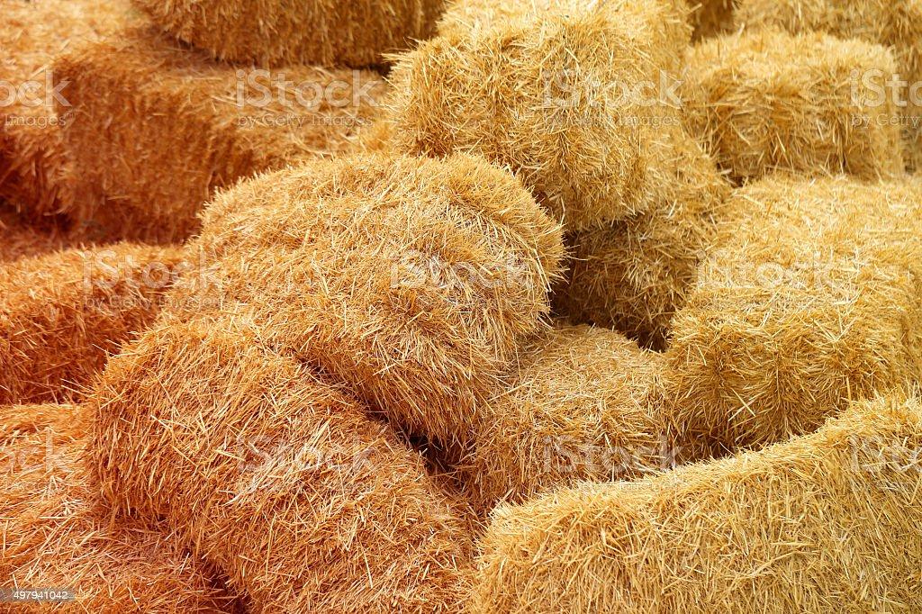 Haystacks in a field stock photo