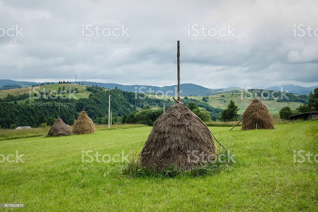 Haystacks in the Field Under the Stormy Sky stock photo