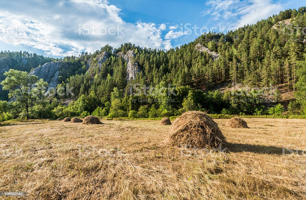 Haystacks in the mountains. stock photo