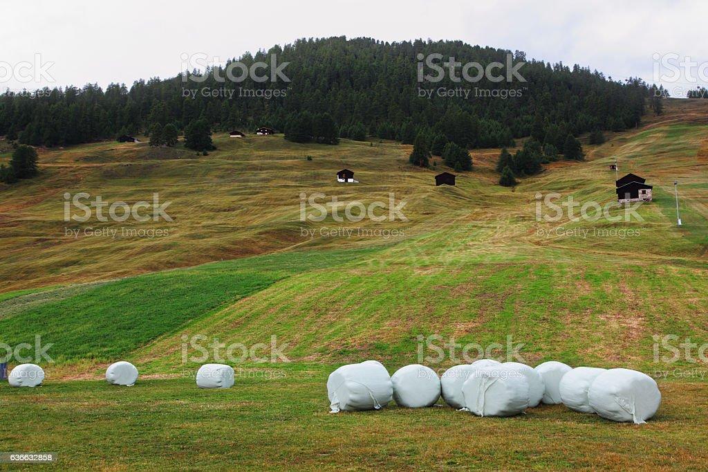 Haystacks on mountain meadows. Switzerland stock photo