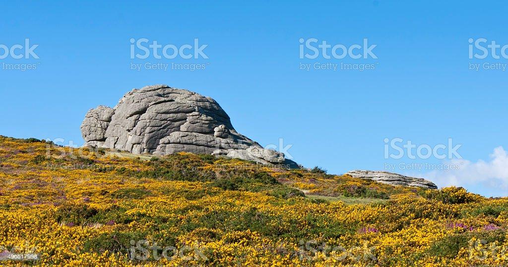 Haytor Rocks. stock photo