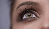 hazel and green eye