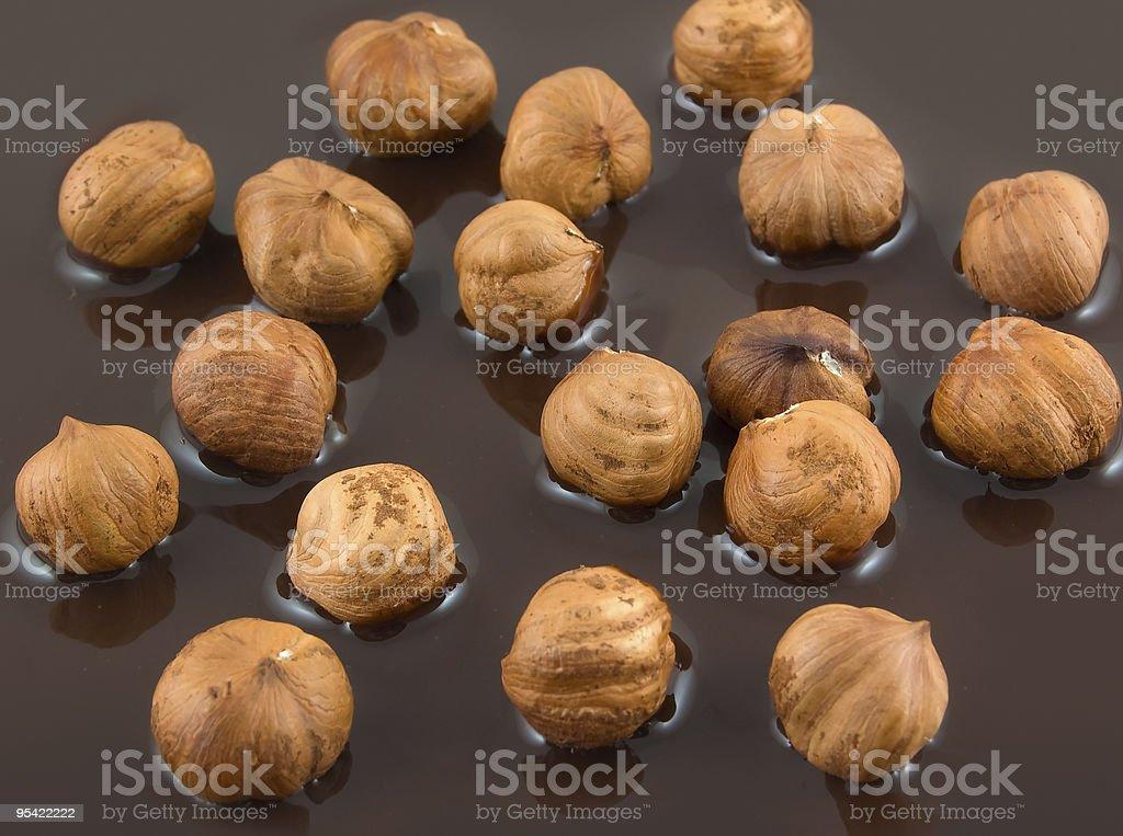 Hazelnut and chocolate royalty-free stock photo