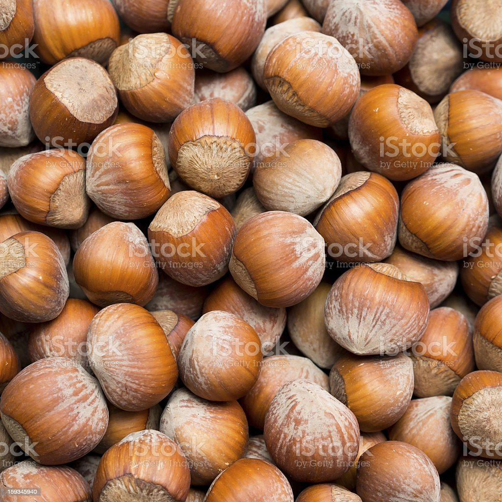 Hazelnut background royalty-free stock photo