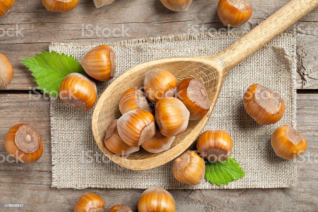 Hazelnut close up stock photo