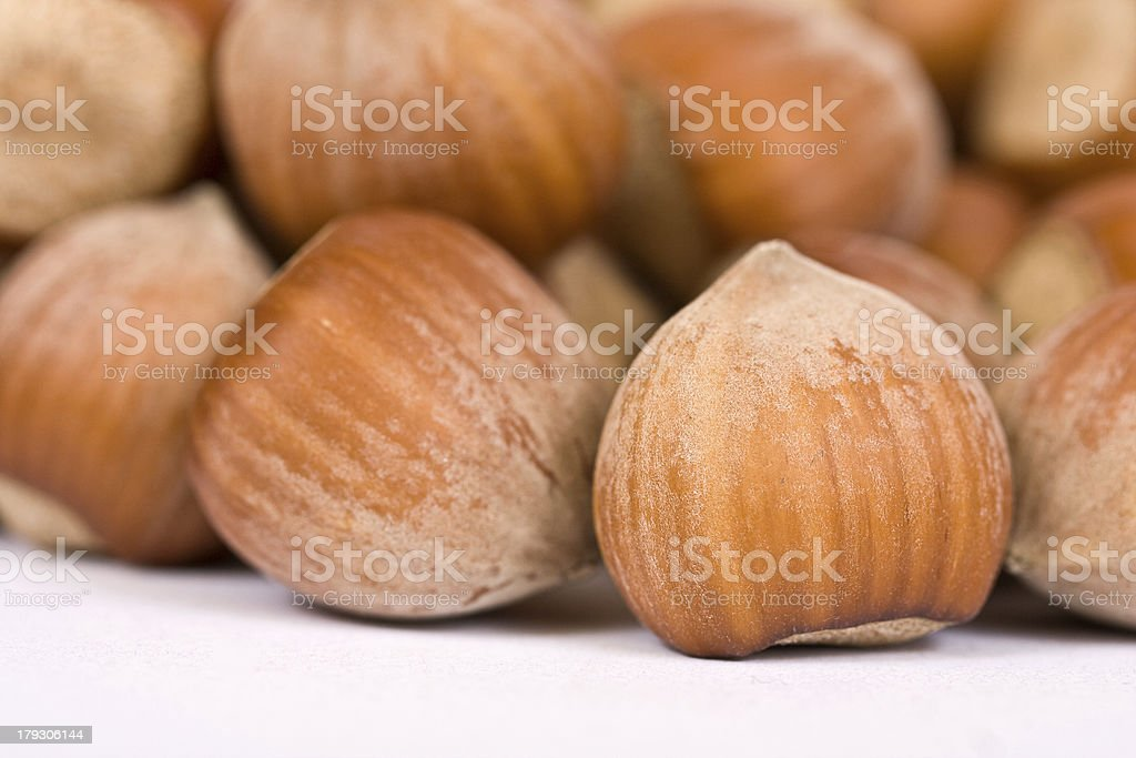 hazelnut close-up isolated over a white background royalty-free stock photo