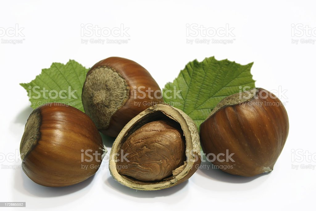 Hazelnut composition on a white background. royalty-free stock photo