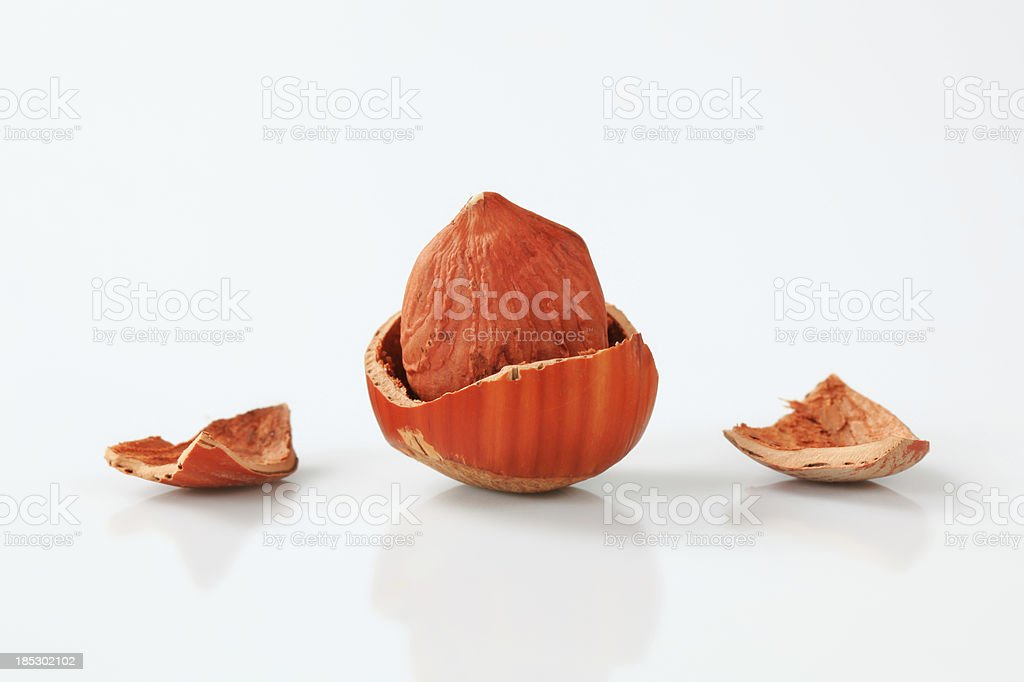 Hazelnut royalty-free stock photo